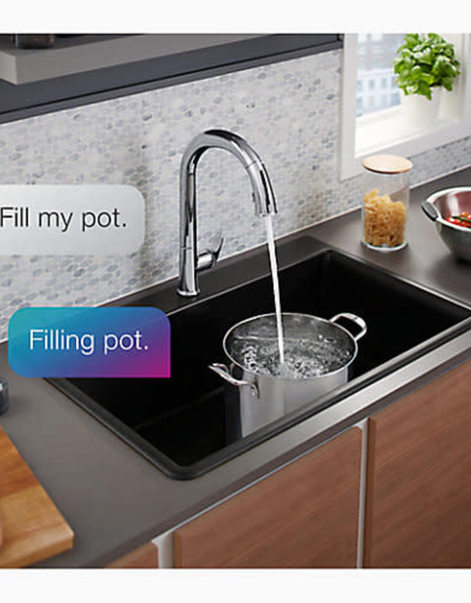 Kohler Kohler Sensate Chrome Kitchen Faucet w Konnect