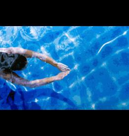 Todd Monk Todd Monk - Deep Dive