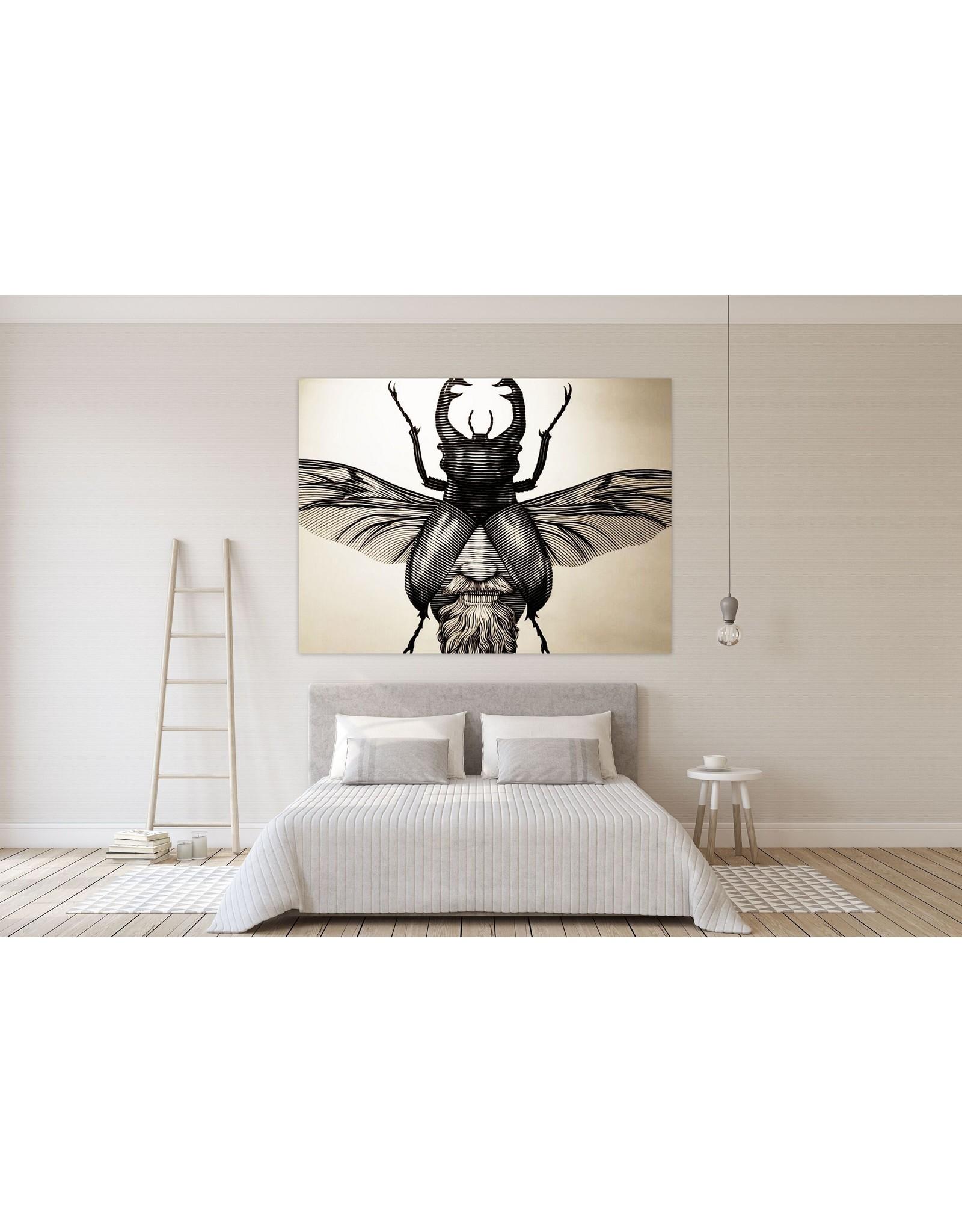 Nicolas Alfalfa Nicolas Alfalfa - King of Beetles