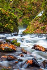 David Leonard Bridal Veil Creek