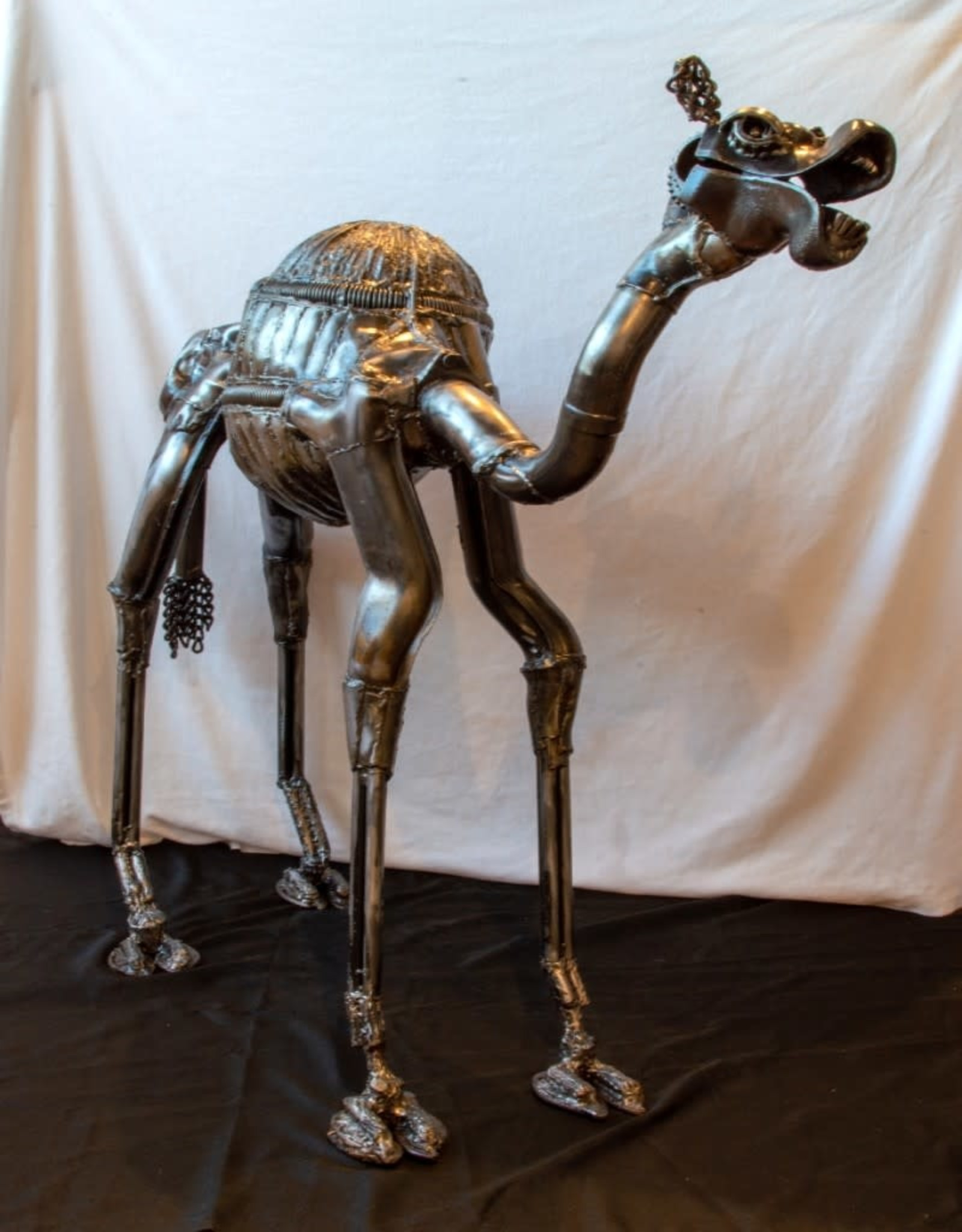 Josh Daily JoshDailyArt/Braying Camel/Metal Sculpture