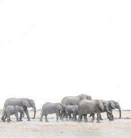 Alicia Hill Elephant Family, canvas print