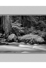 Erskine Wood Buck Creek, Washington