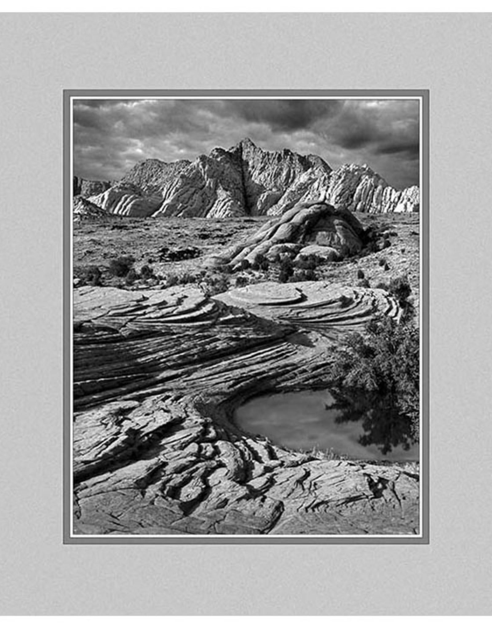 Erskine Wood Snow Canyon, Utah