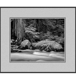 Erskine Wood Buck Creek