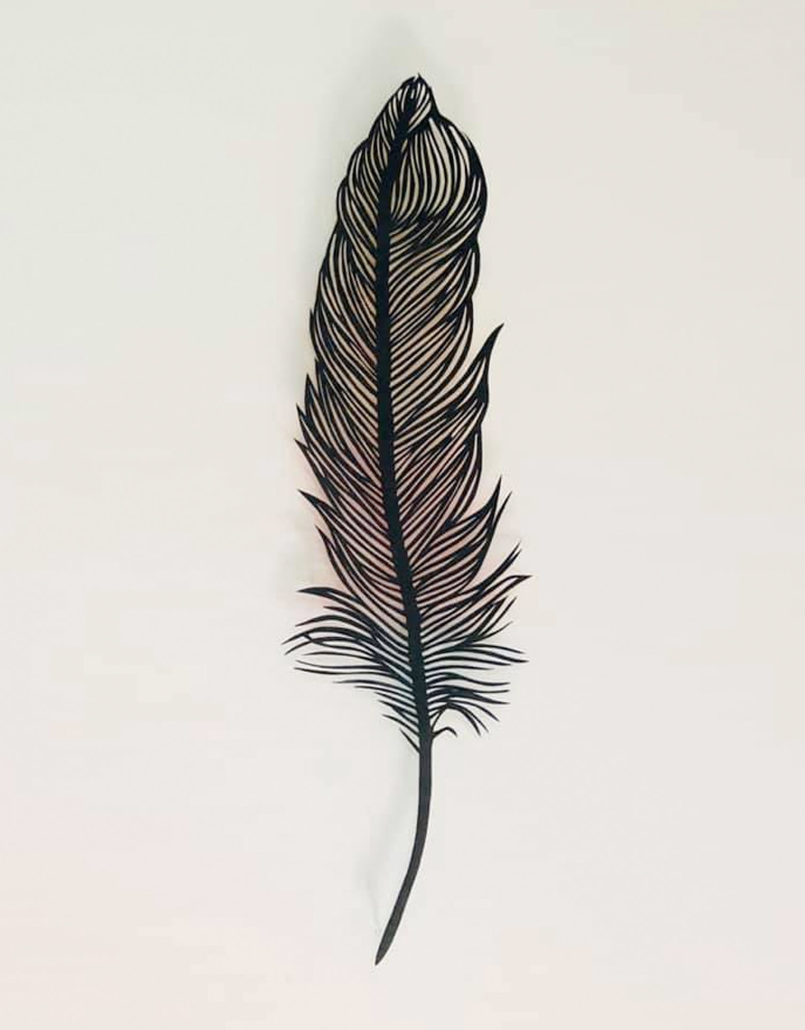David Friedman Rainbow Feather