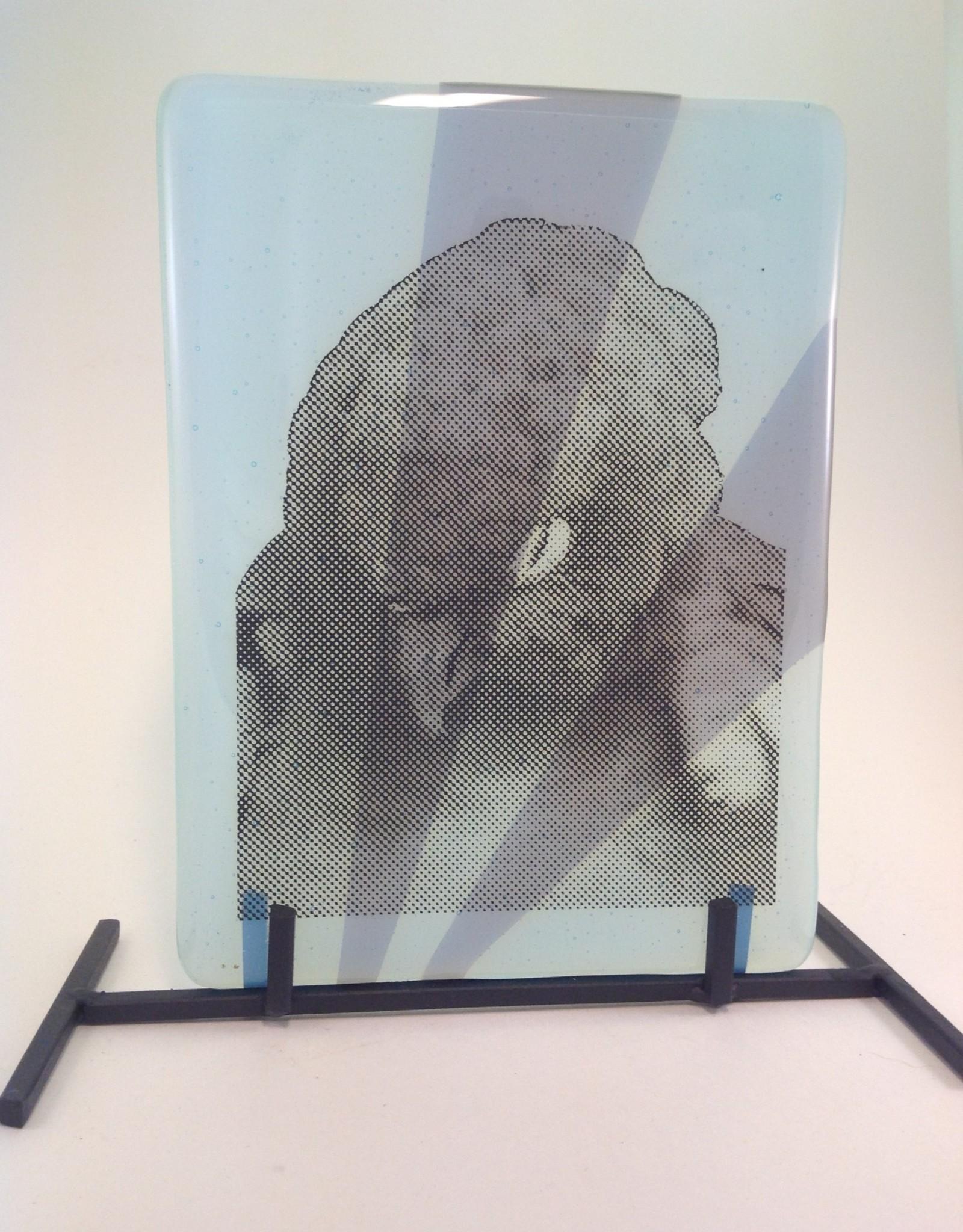 Ann Mackiernan Fused Glass Preening Parrot
