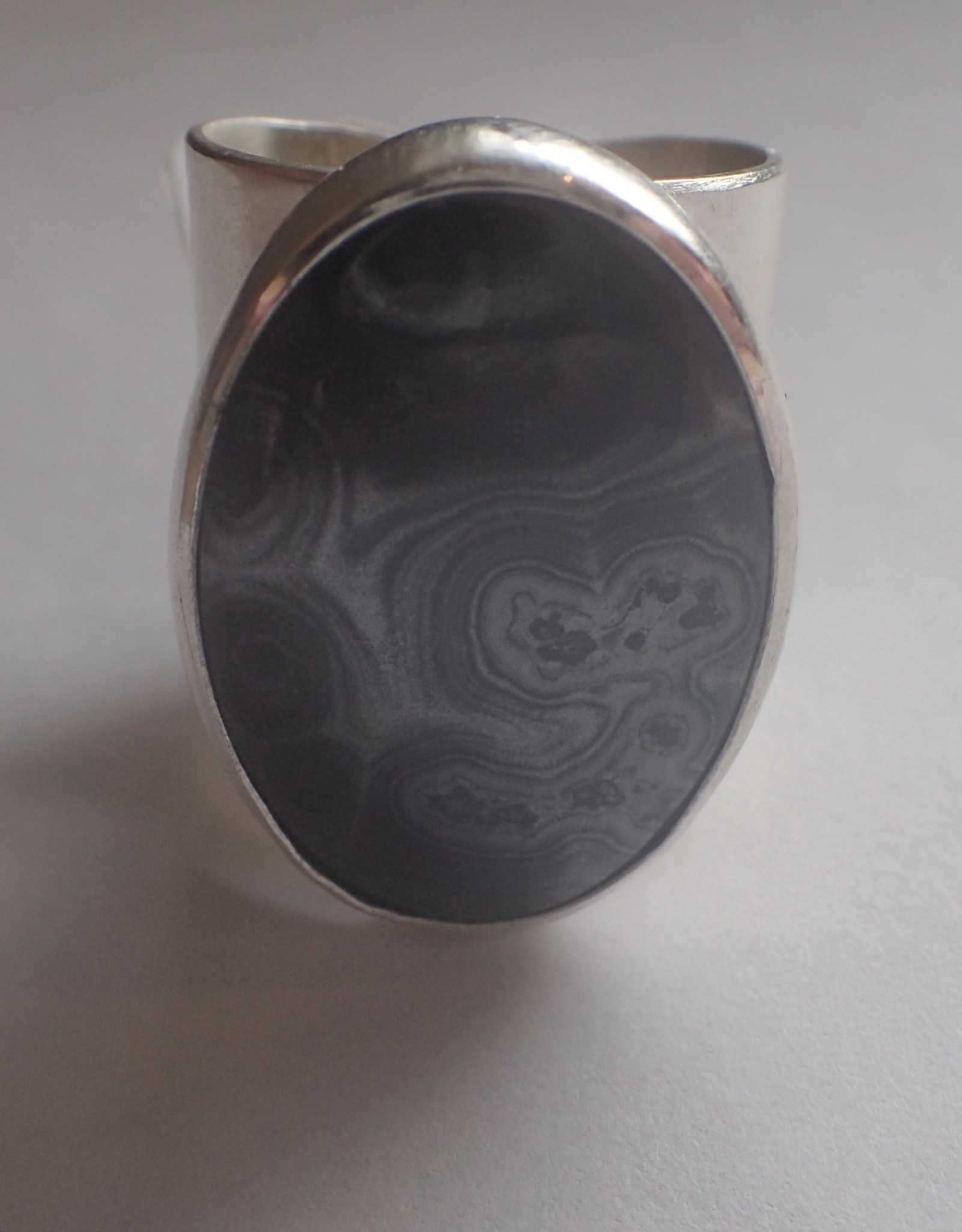Lilly Parker Petrified Wood, Sterling Silver Ring, Size 9