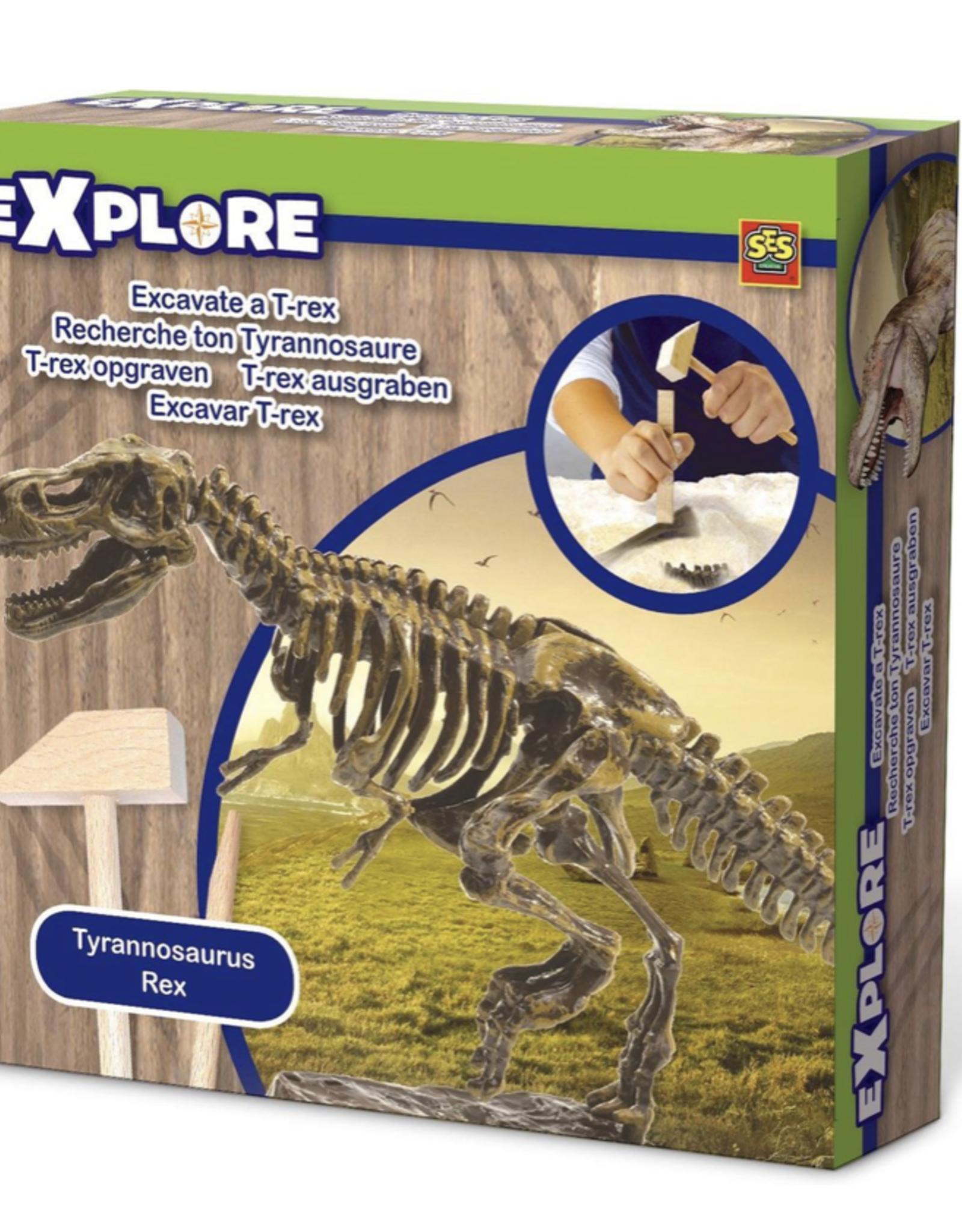 Explore Excavate a T Rex
