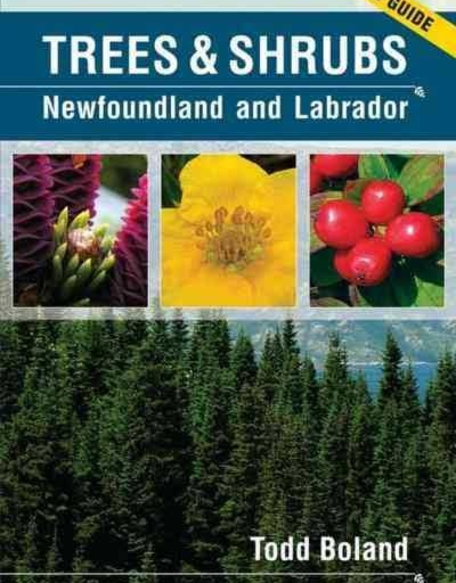 Trees and Shrubs of NL