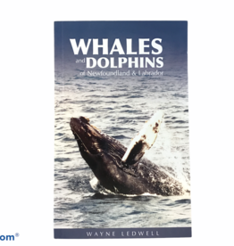 Dolphins and Whales of NL
