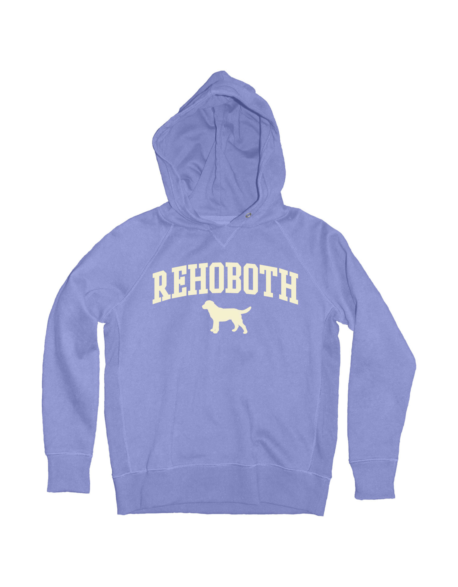 BLUE 84 DOUBLE TIME LAB SOFT YOUTH HOODIE