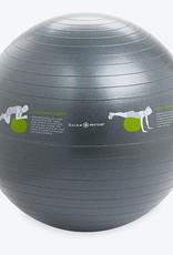 Gaiam Gaiam Restore Self-Guided Stability Ball
