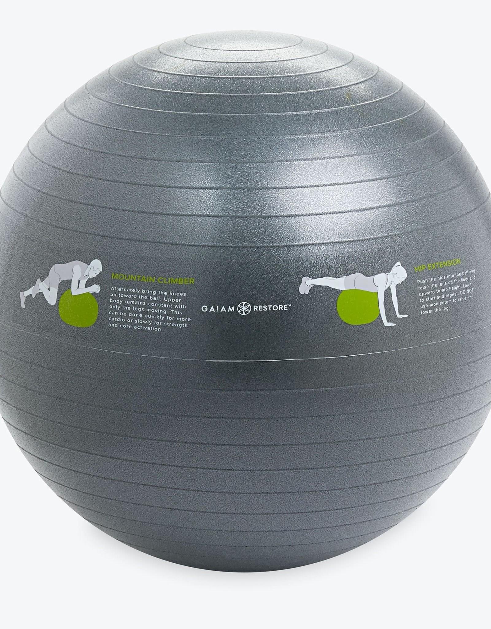 Gaiam Restore Self-Guided Stability Ball