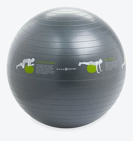Gaiam Restore Self-Guided Stability Ball