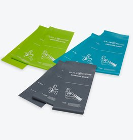 Gaiam Restore Self-Guided Strength & Flexibility Resistance Bands Kit