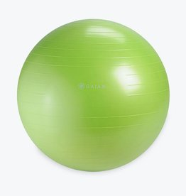 Gaiam Gaiam Restore Strong Back Stability Ball Kit 65cm