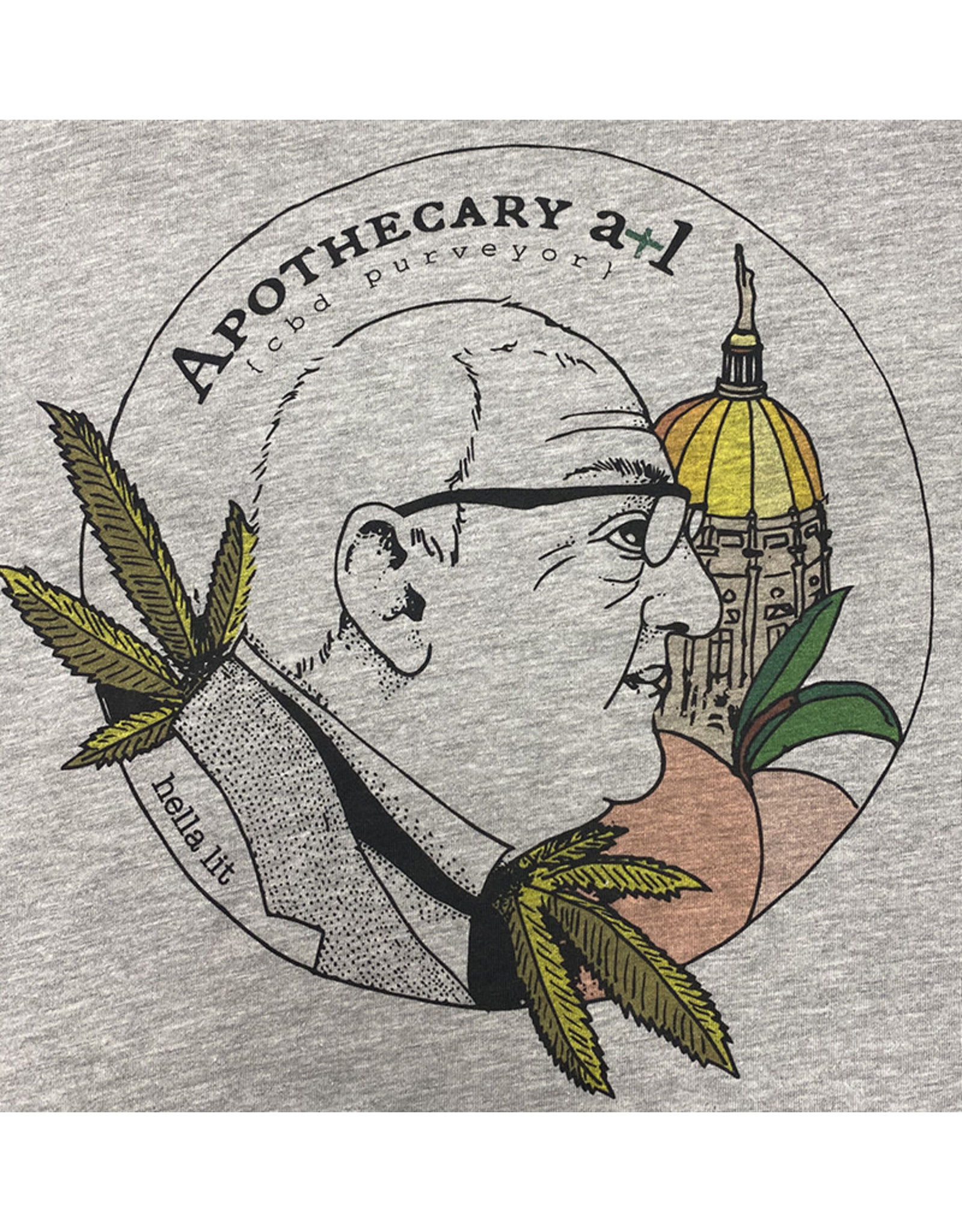 Next Level Apparel Apothecary ATL T Shirt Gray Small
