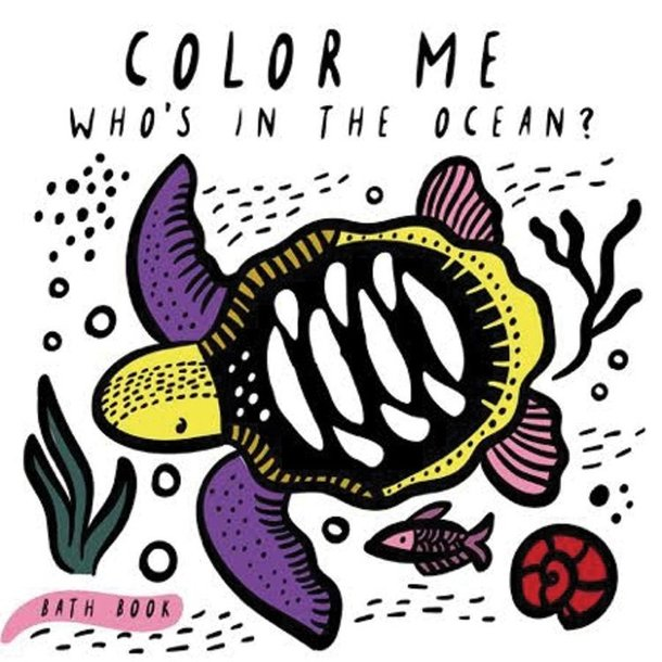 Hachette Publishing Color Me Water Play Book:
