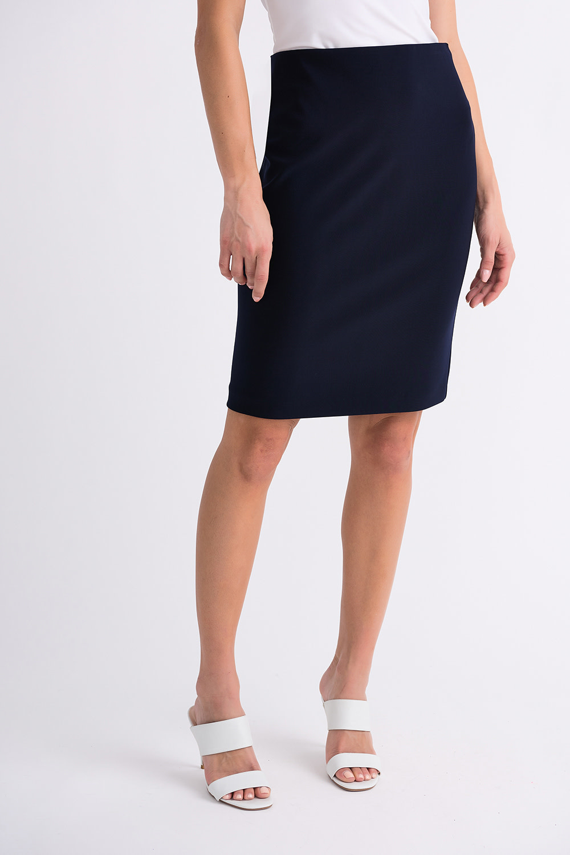 Navy Dressy Skirt