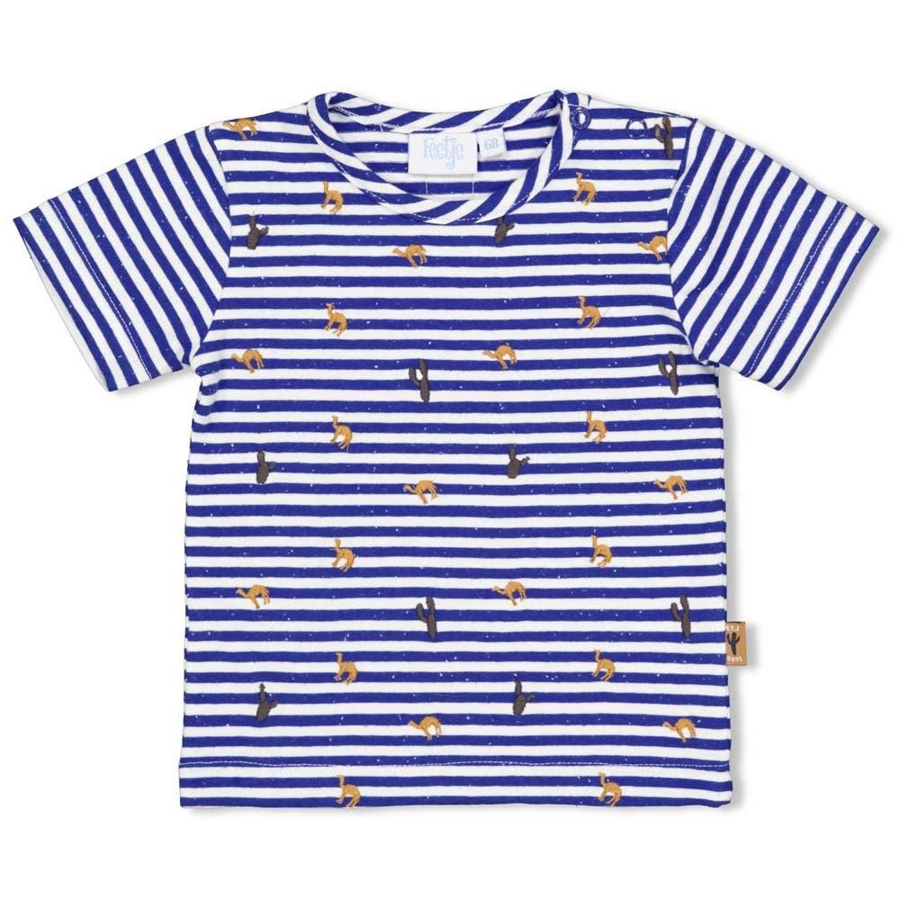T-Shirt Stripe - Looking Sharp