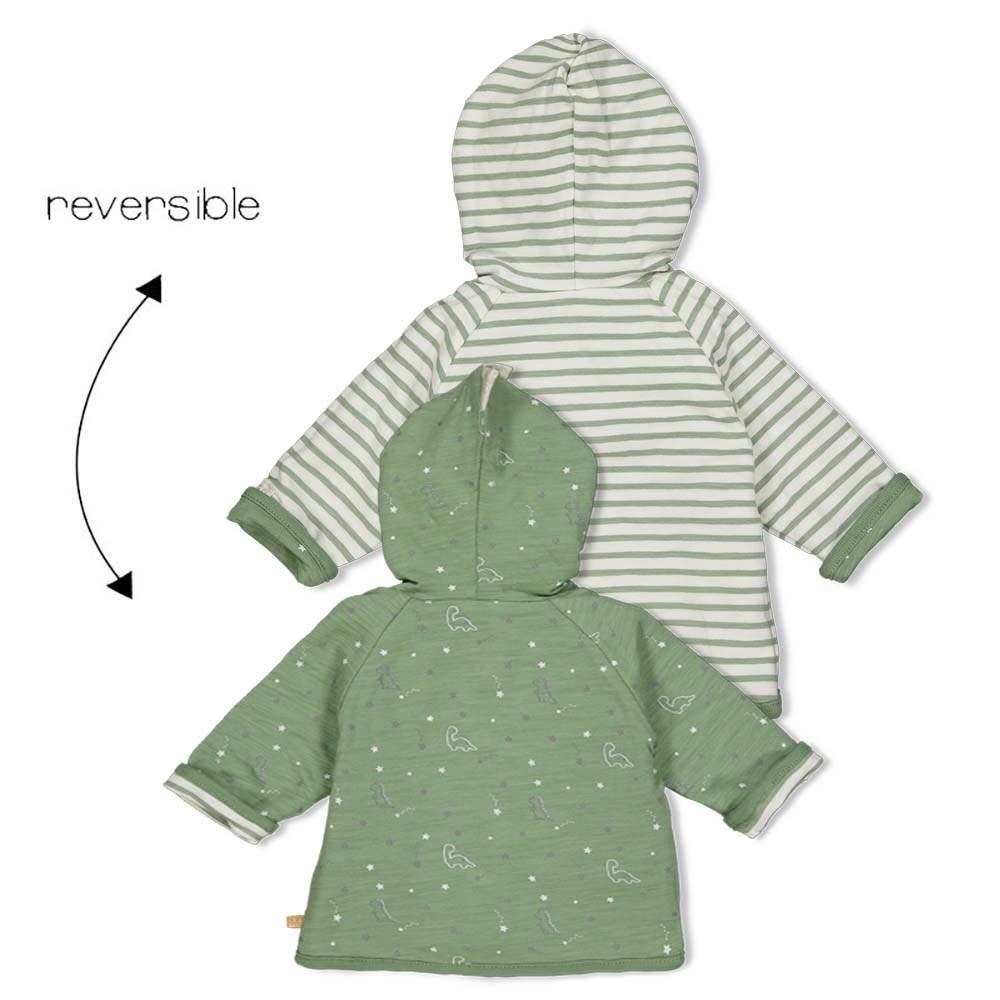 Reversible Jacket with Hood - Dinomite