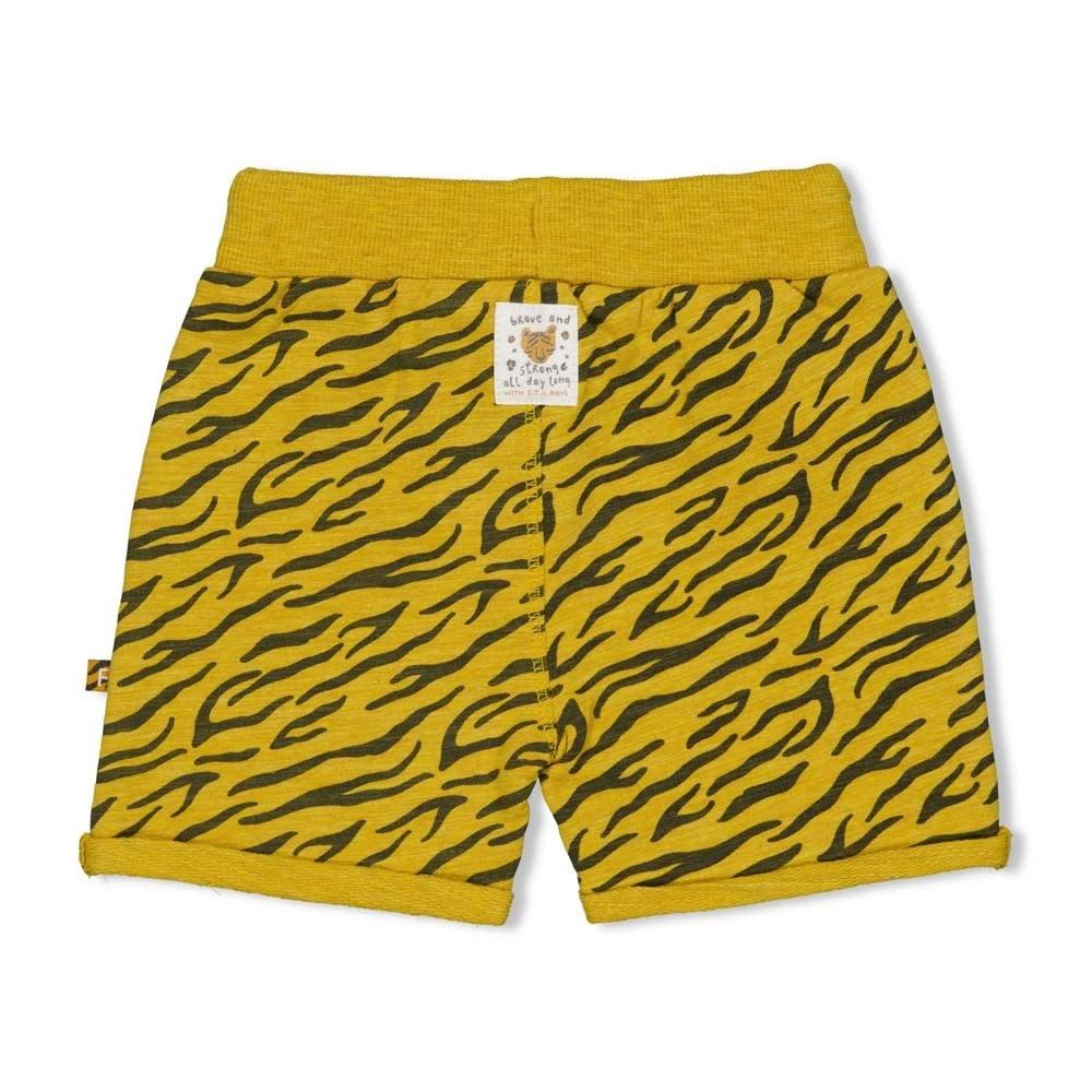 Print Shorts - Go Wild
