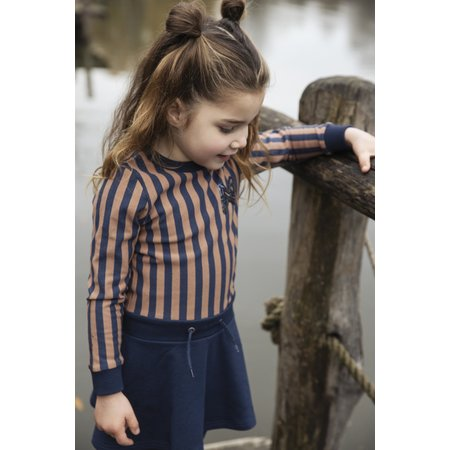 Navy and Terra Cotta Striped Body Dress