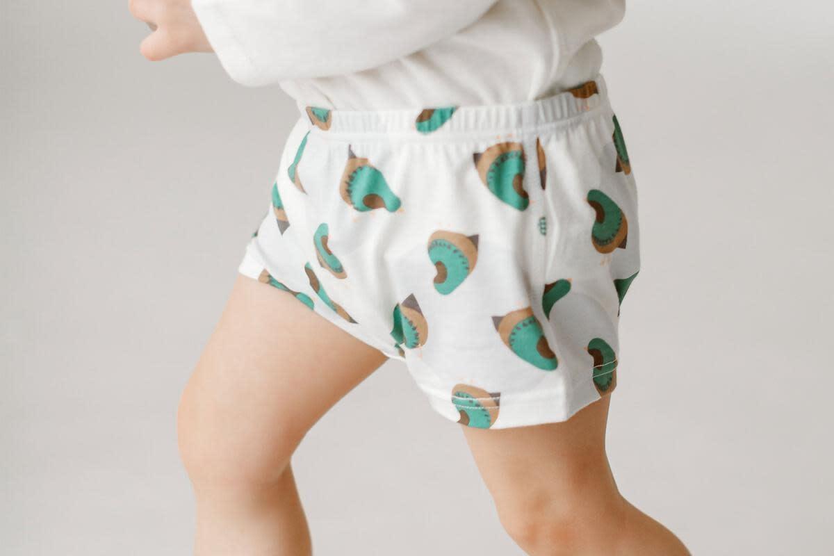 Girls Boy Shorts - Quails (2 Pack)