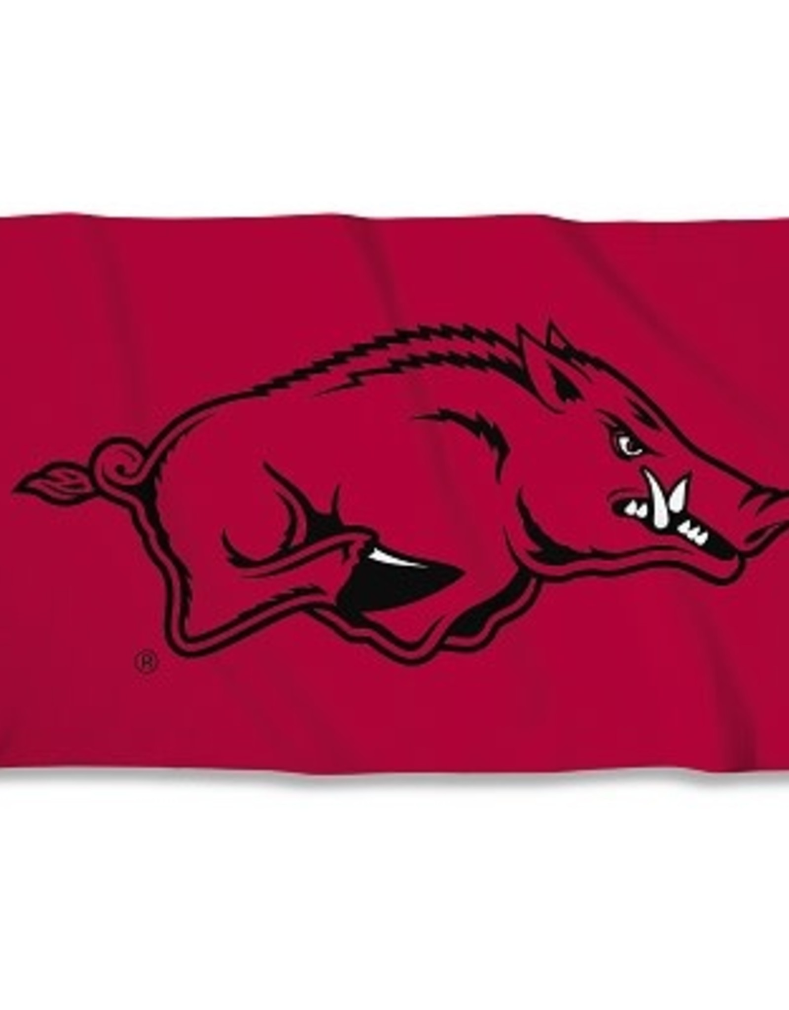 BSI Products Arkansas 3' X 5' Flag