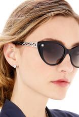 Brighton Meridian Zenith Sunglasses