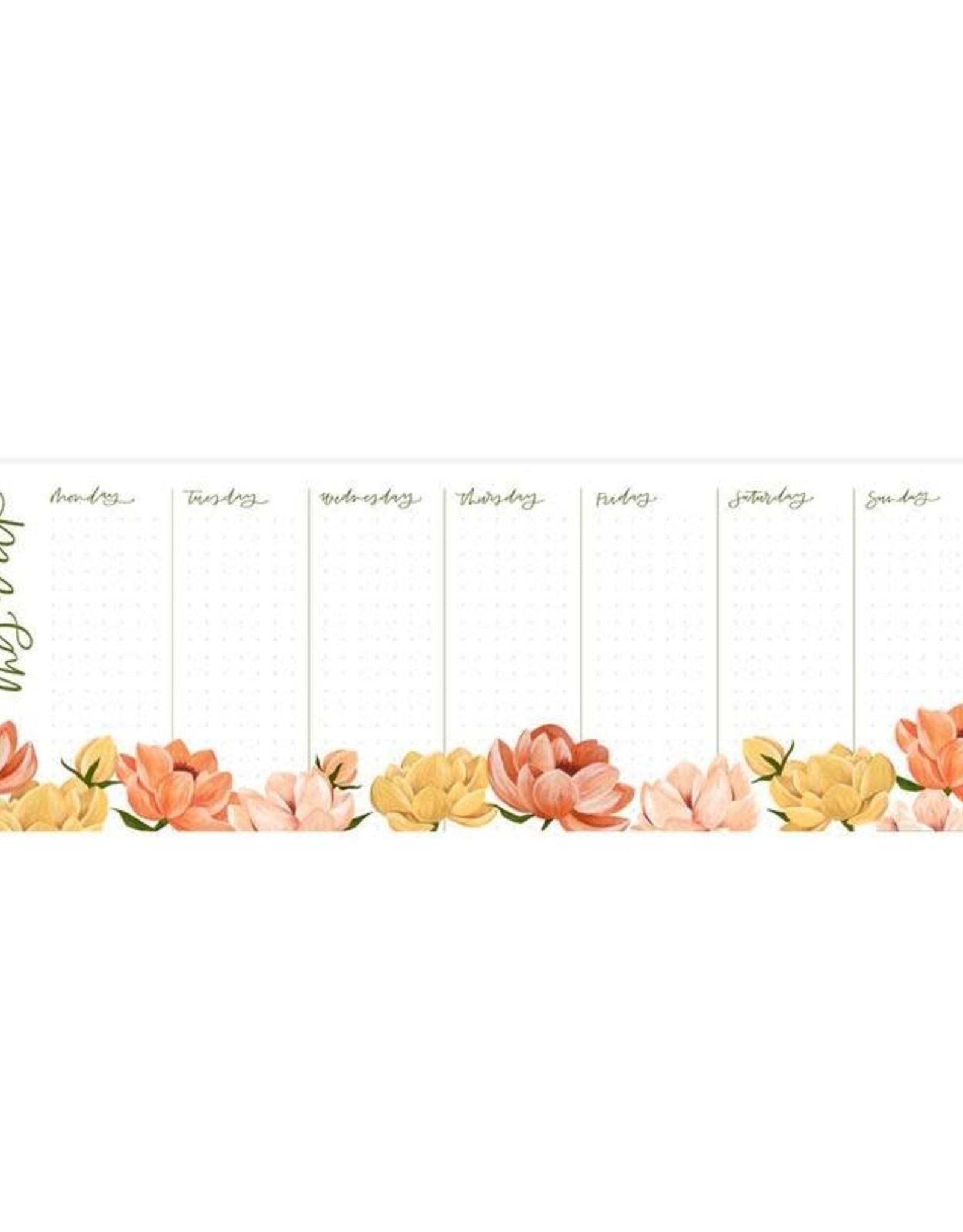 1Canoe2 1canoe2   petaluma weekly notepad