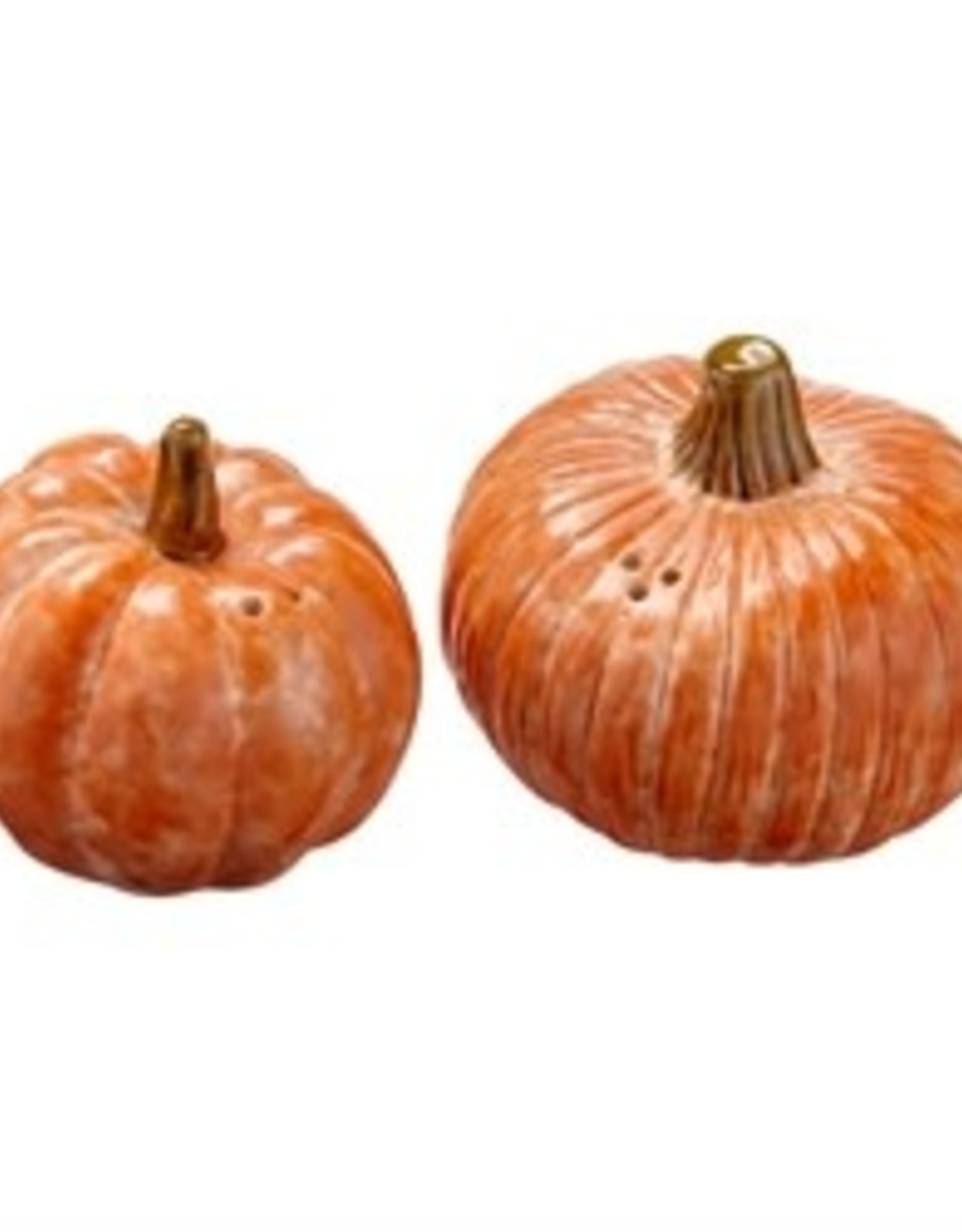Tag TAG   oversized rustic pumpkin salt + pepper shakers