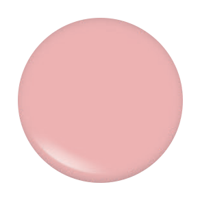 Pinnacle Cosmetics Gloss Puff-Piece (C)