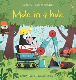 Usborne Usborne Phonics Mole In A Hole
