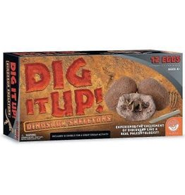 MindWare Dig It Up! Dinosaur Skeletons