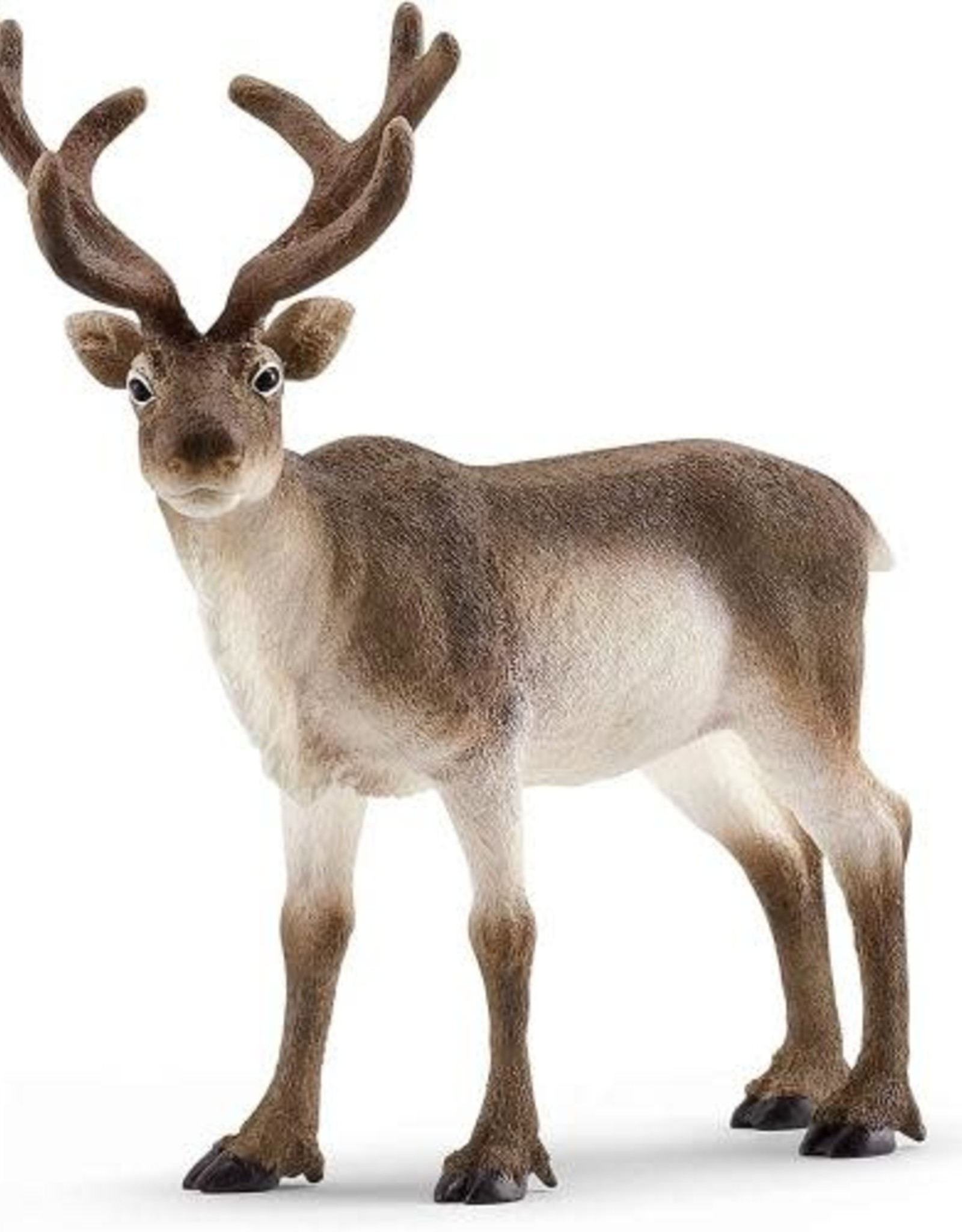 Schleich Schleich Wild Life - Reindeer