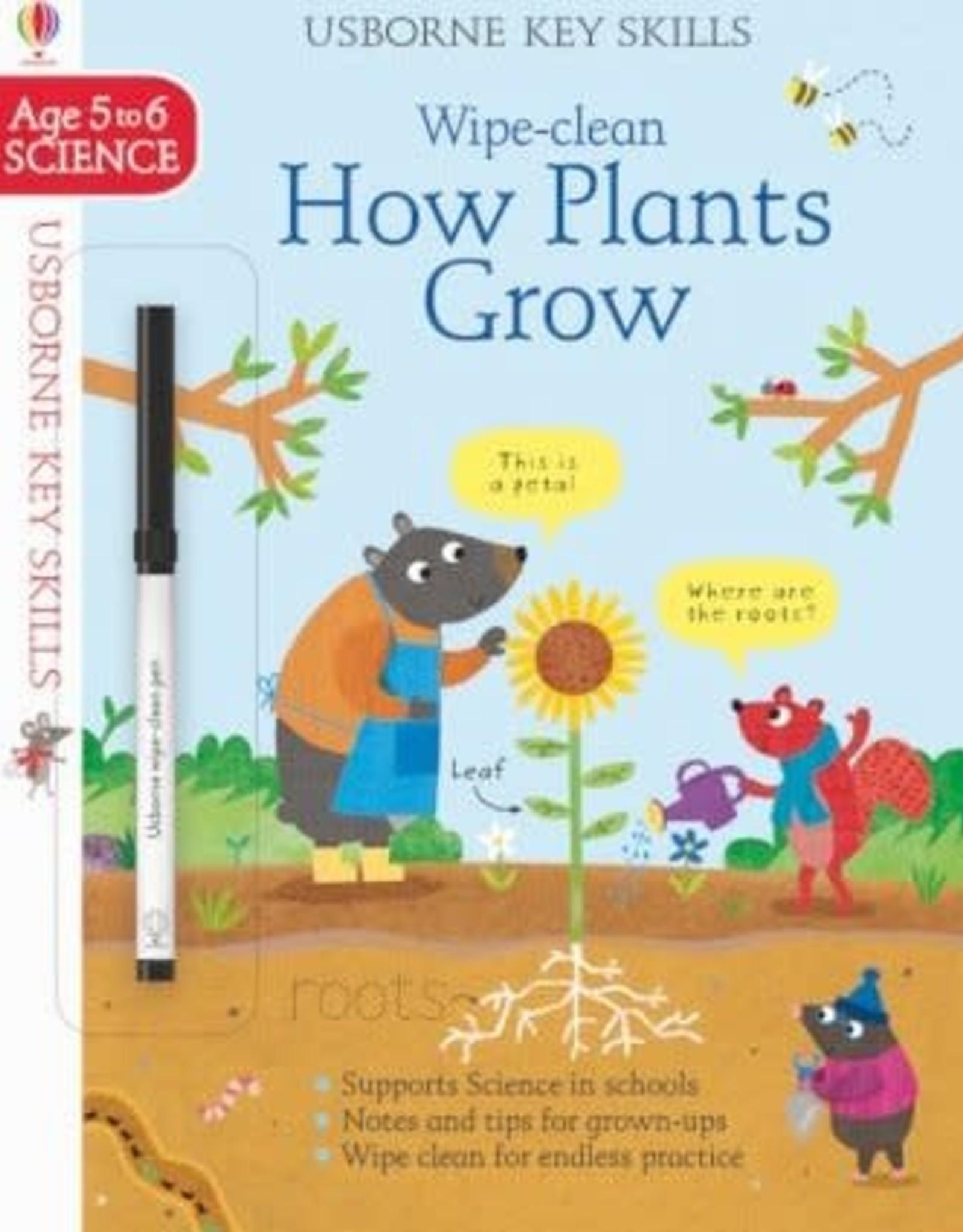 Usborne Usborne Wipe Clean How Do Plants Grow?