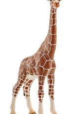 Schleich Schleich Giraffe, Female