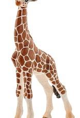 Schleich Schleich Giraffe Calf