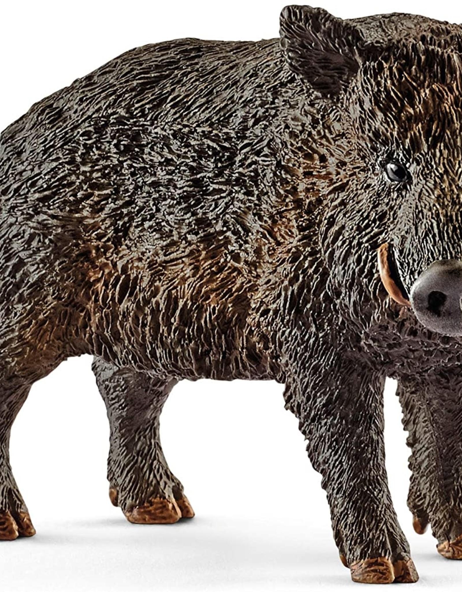 Schleich Schleich Wild Boar