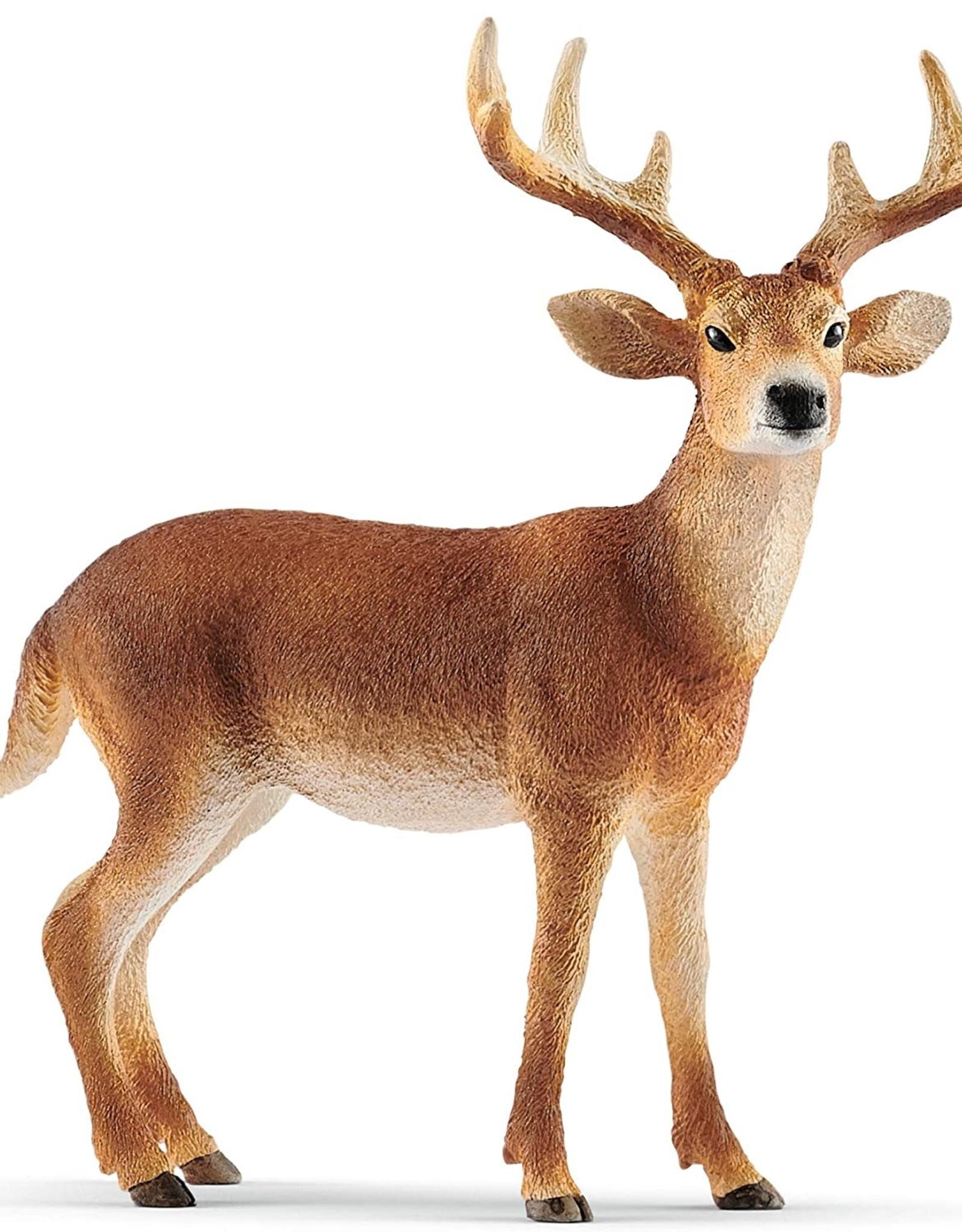 Schleich Schleich White Tailed Buck