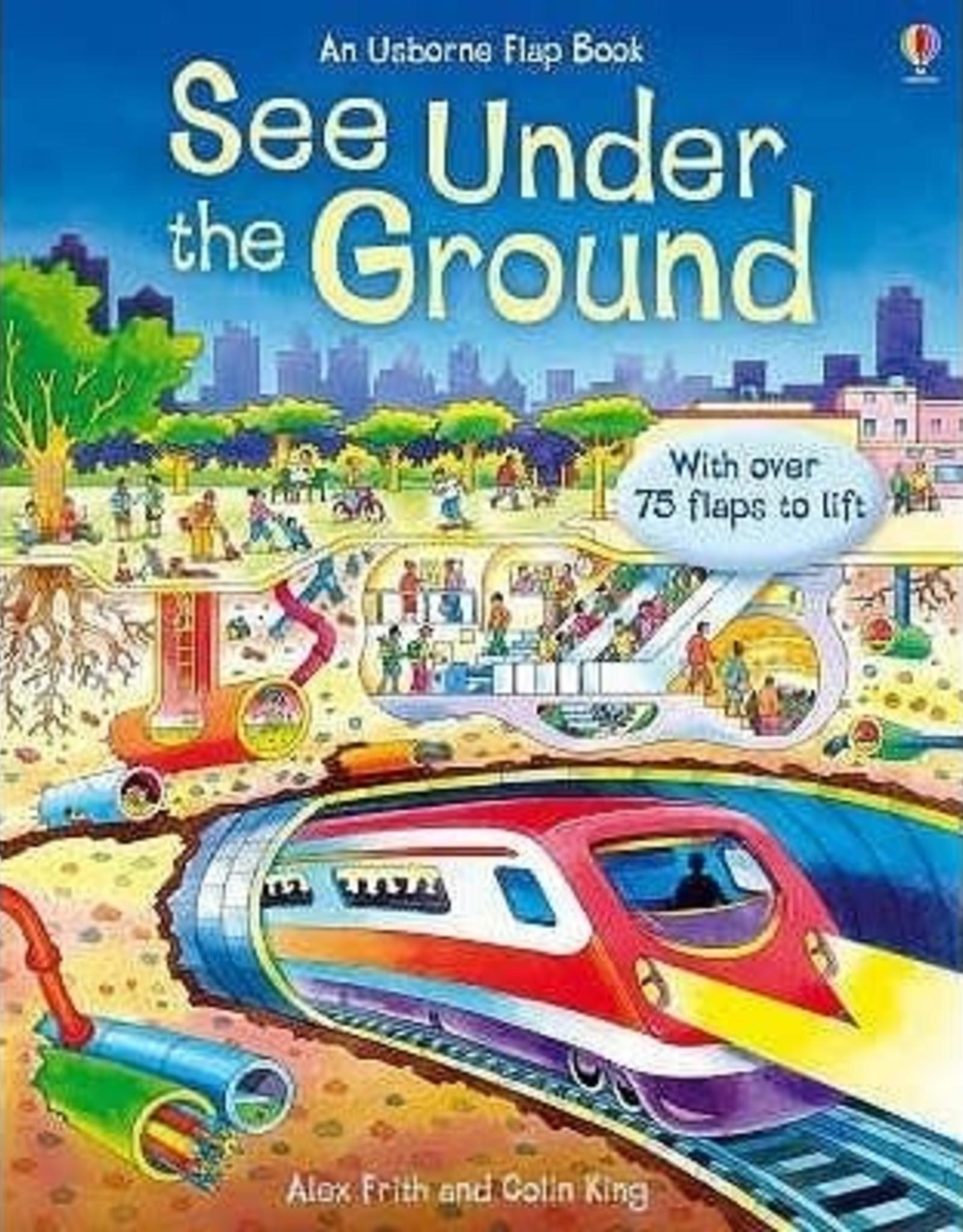 Usborne See Inside Under the Ground