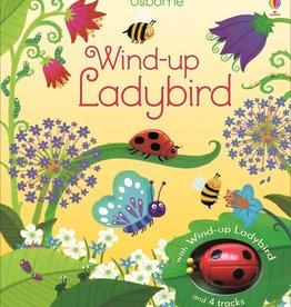 Usborne Wind Up Ladybird