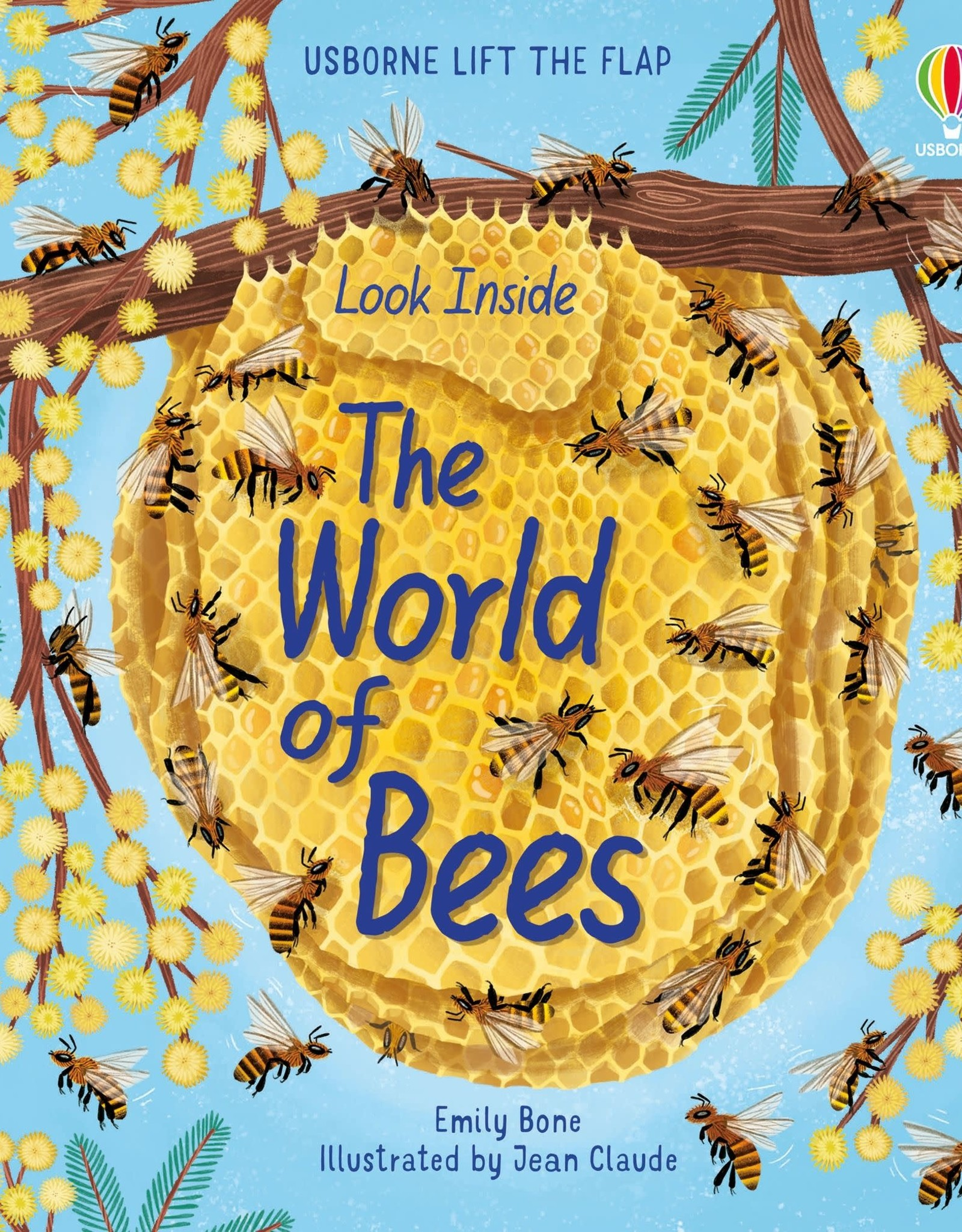 Usborne Look Inside the World of Bees