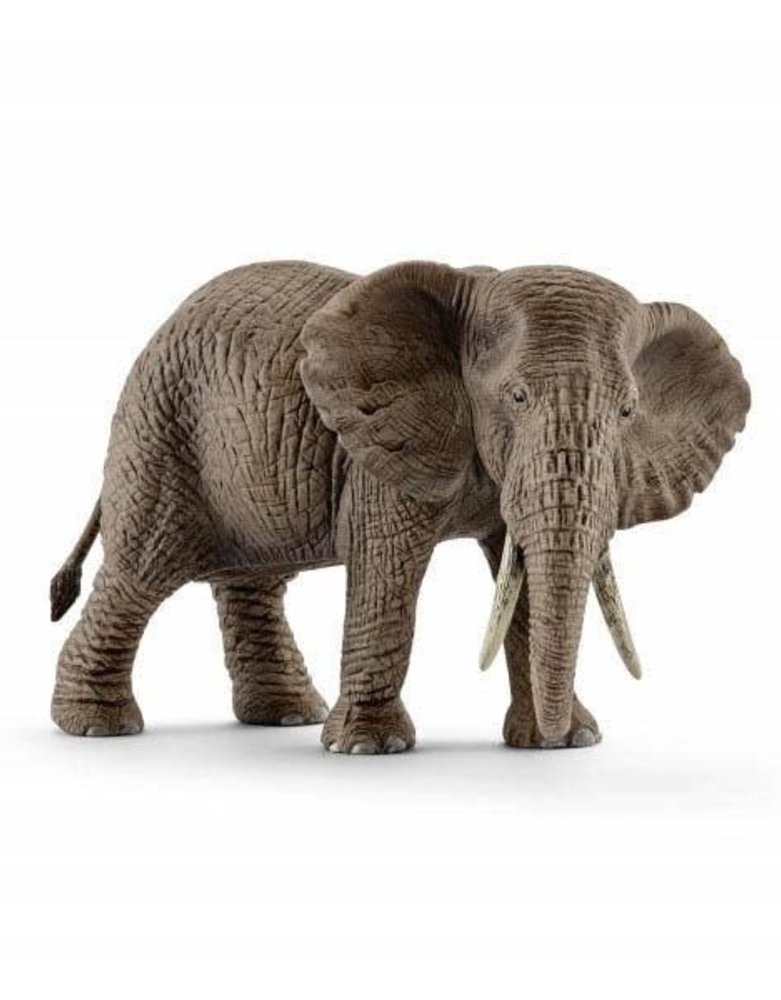 Schleich Schleich Wild Life - African Elephant, Female