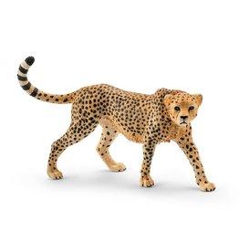 Schleich Schleich Cheetah Female