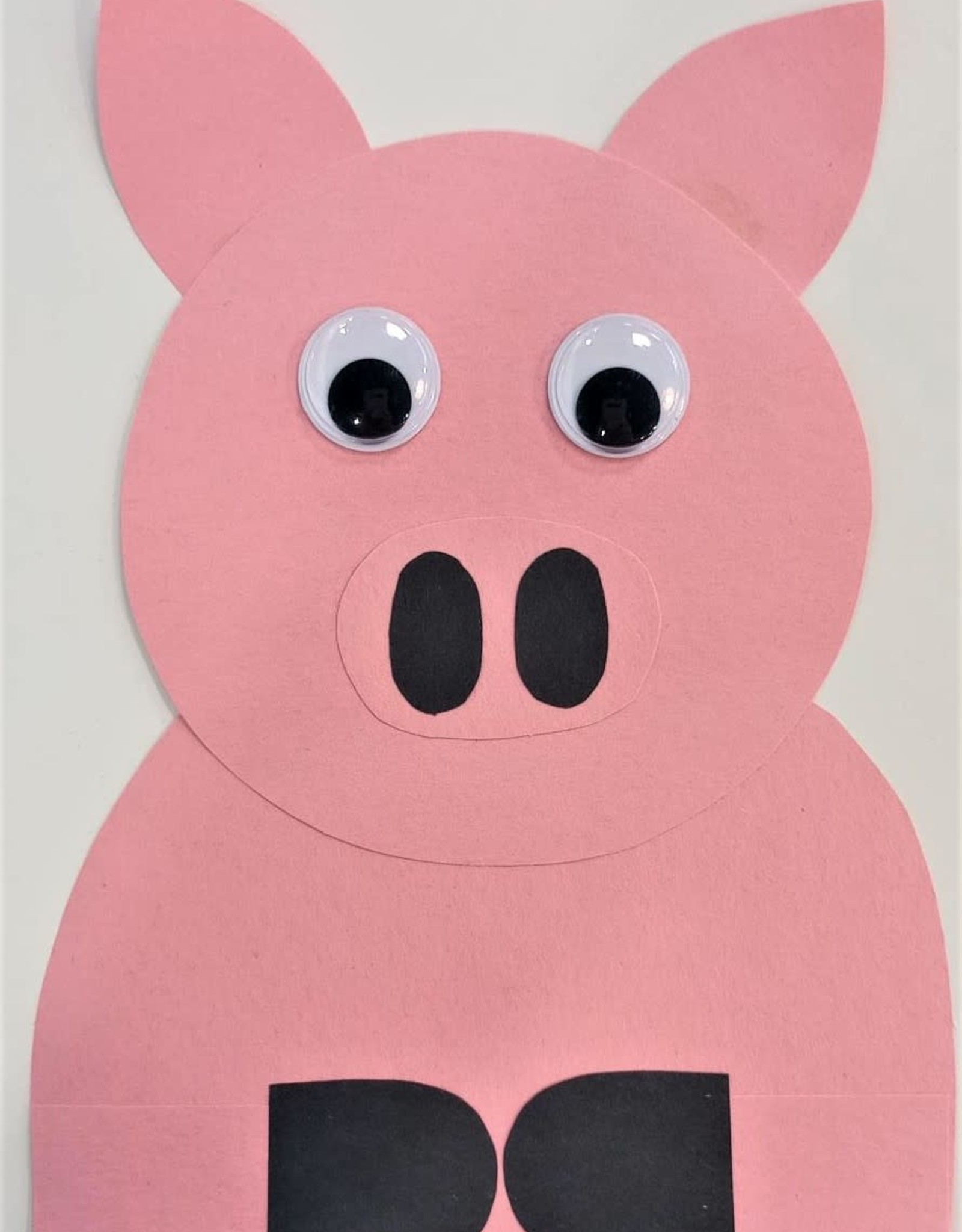 DIY Craft Kit - Pig