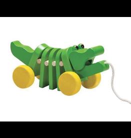 Plan Dancing Alligator