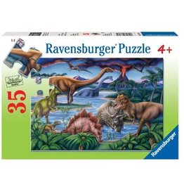 Ravensburger Dinosaur Playground (35pc)